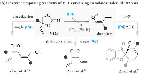 成都大学李俊龙研究: Lewis酸/Brønsted 碱协同钯催化: 基于乙烯基碳酸酯立体选择性构建骨架多样性螺环内酰胺